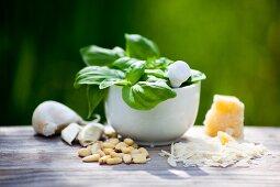 Ingredients for pesto alla genovese