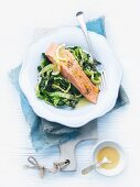 Warm salmon fillet on savoy cabbage