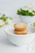 Coconut cakes in a bowl with desicated coconut