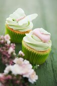 Cupcakes with green icing