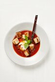 Bread soup from Sicily with tomatoes and mozzarella