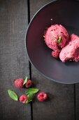A Bowl of Raspberry Ice Cream; Fresh Raspberries and Mint
