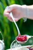 A hand holding a ladle of cherry cooler