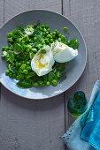 Pea salad with mint and mozzarella