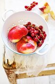 Vineyard peaches and redcurrants in a metal colander