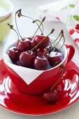 Freshly picked cherries in a red cup