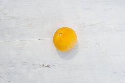 A tomato of the variety 'Garden Peach'