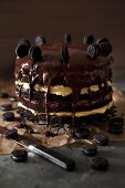 A chocolate layer caked with light and dark cream and chocolate biscuits
