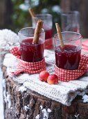 Glasses of hot apple and elderberry punch garnished with cinnamon sticks