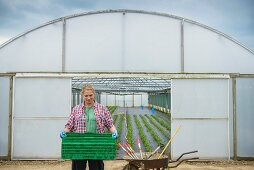 Worker carrying crate outside polytunnel