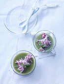 Cucumber and radish in aspic with potatoes