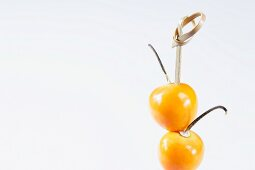 Physalis on a wooden skewer