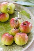 Ornamental apples on a plate