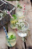 Selbstgemachte Limonade mit Pfefferminze in Schraubgläsern