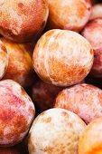 Organic Dapple Dandy Pluots from the Farmers Market