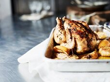 Roast chicken with lemons, onions and thyme (close-up)