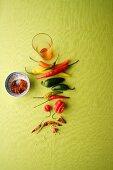 An arrangement of chillis