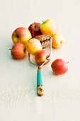Several apples and a masher