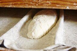 Unbaked bread on a shelf
