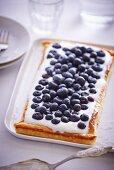 Blueberry tart with quark
