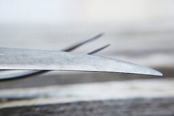 Carving cutlery (close-up)