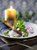 Matjesfilet mit Pesto & Brot (Skandinavien)