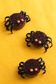 Chocolate spider cupcakes made with liquorice and chocolate beans for Halloween