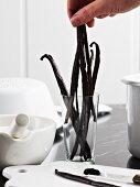 Fresh vanilla pods for homemade vanilla sugar