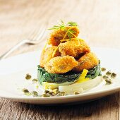 Breaded mussels with chicory on a herb and caper sauce