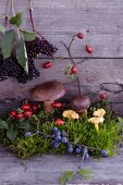 An autumnal arrangement of moss, mushrooms, blueberries, rosehips and elderberries on a wooden surface