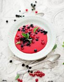 Frozen redcurrant soup with stevia
