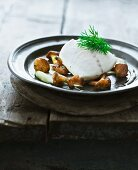 Steamed cod fillets with fried chanterelle mushrooms