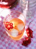Redcurrant syrup with ice cubes