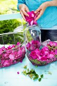 Freshly picked wild rose petals in baskets and a jar