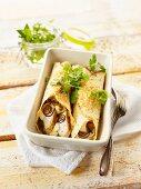 Enchiladas with chicken and coriander
