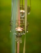 Tealight lanterns decorating garden