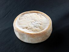 Chevrotin des Aravis (French goat's cheese)