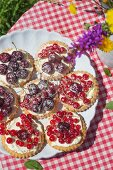 Tartlets with white chocolate quark cream and fresh cherries on a plate on a table outside laid with a checked tablecloth