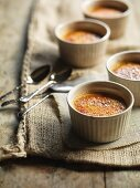 Creme brulee with vanilla and cardamom in oven-proof ramekins