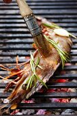 A rosemary flavoured king prawn being brushed on a grill