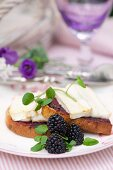 Grilled bread topped with blackberry jam, soft goat's cheese and cress