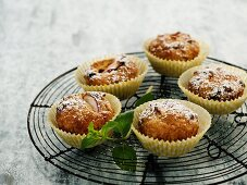 Apple muffins with nuts and raisins