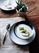 Korean miso soup with oyster cream