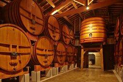 Weinkeller vom Weingut Beaucastel in der Appellation Chateauneuf-du-Pape, Frankreich
