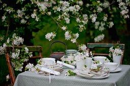 Set table below apple tree