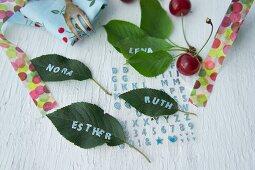 Names written on cherry leaves