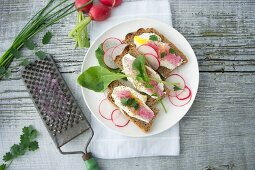 Slices of bread topped with radishes and crème fraîche