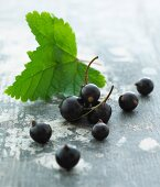 Blackcurrants with leaves (close-up)