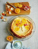 Low-fat orange cheesecake with a Melba toast and apricots base, low-fat quark, yoghurt cream cheese and pomegranate seeds