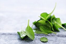 Baby spinach on a metal surface